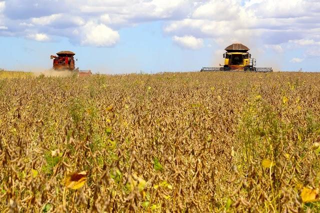 Estado deverá produzir 41,2 milhões de toneladas de grãos