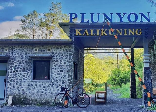 Plunyon Kalikuning
