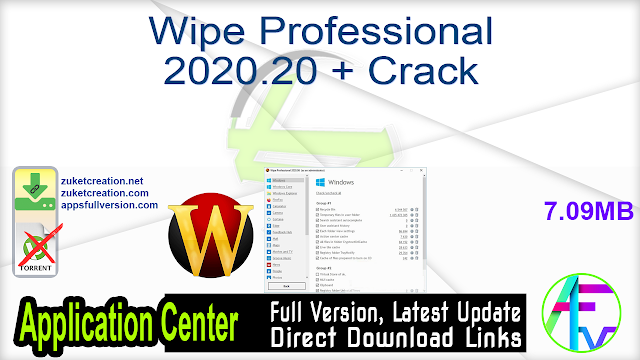 Wipe Professional 2020.20 + Crack