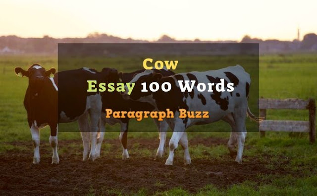 Essay on Cow 100 Words