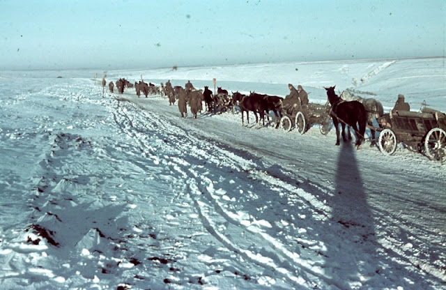 German horses could haul in the depths of winter when motor vehicles without antifreeze had issues worldwartwo.filminspector.com