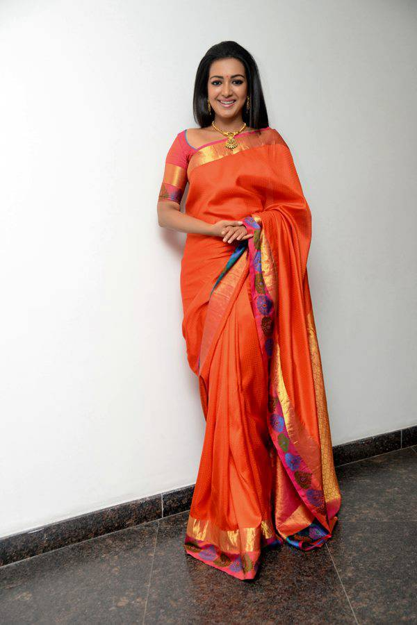 Catherine Tresa Latest Hot Photos In Orange Saree