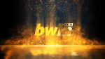 Bumper Video Gold Bwin