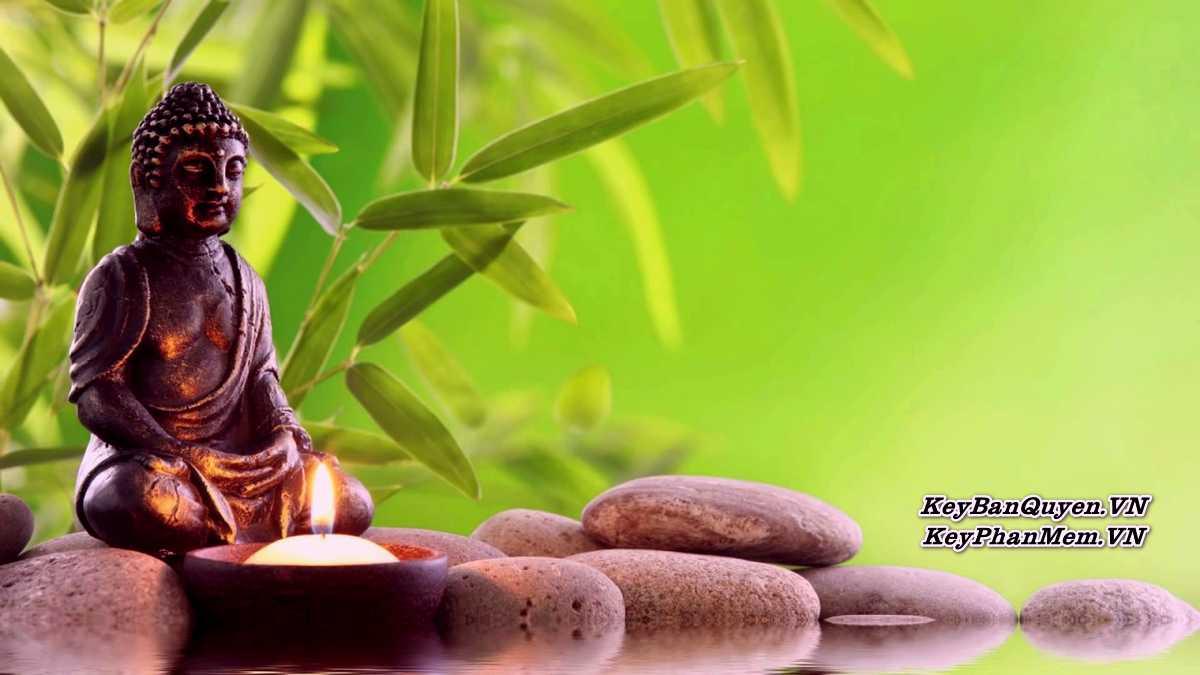 Sách nói - Sống Thiền 365 Ngày - Krishnamurti ( Tiếng Việt + MP3 ).