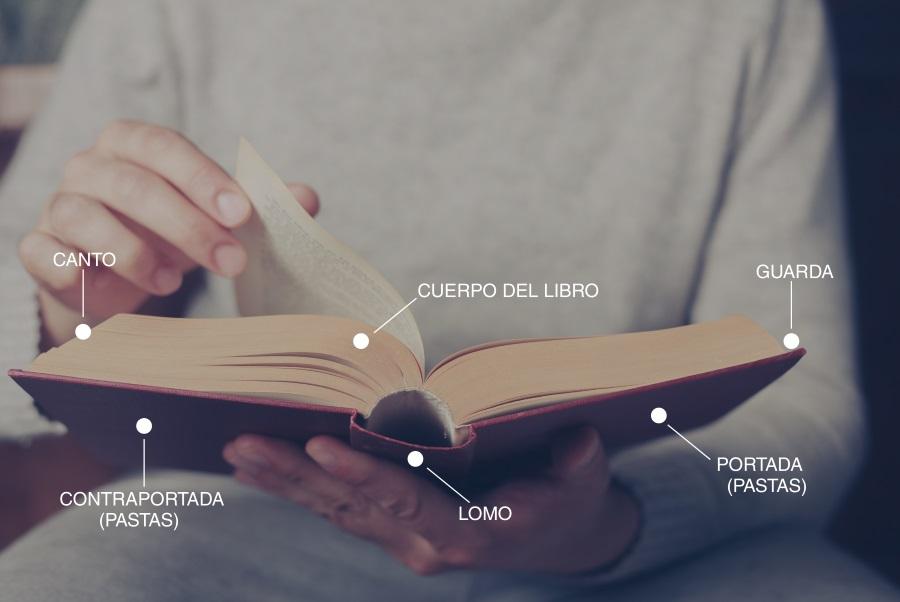 Cómo Reparar Un Libro De Forma Sencilla