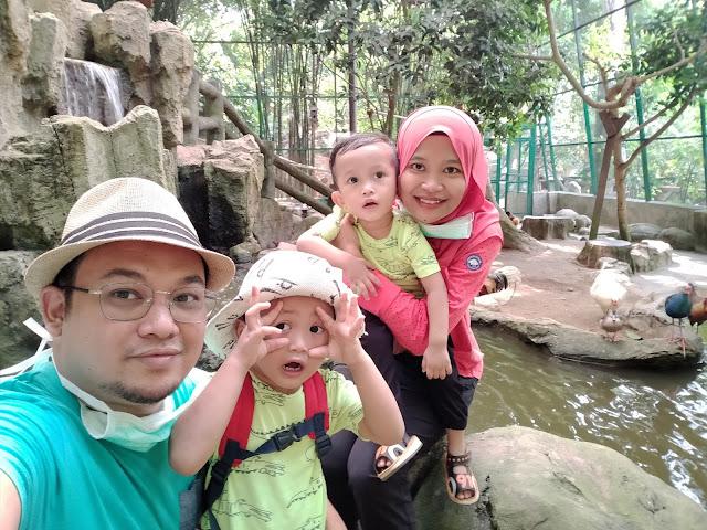 gambar keluarga dalam sangkar burung farm in the city petting zoo