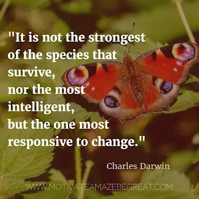 "40 Most Powerful Quotes and Famous Sayings In History: ""It is not the strongest of the species that survive, nor the most intelligent, but the one most responsive to change."" - Charles Darwin"