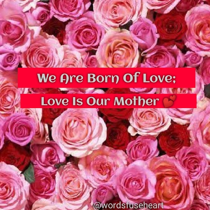 Mother's Love motivational quotes