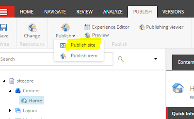 Custom Sitecore Command to Disable or Hide Full Publish Menu Option in Sitecore Content Editor
