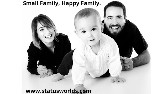 Family Status And Quotes