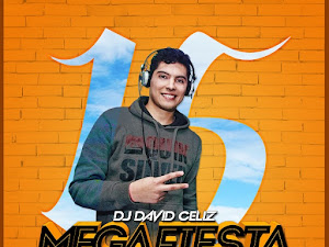 Descargar Mega Fiesta 15 Dj David Celiz Gratis