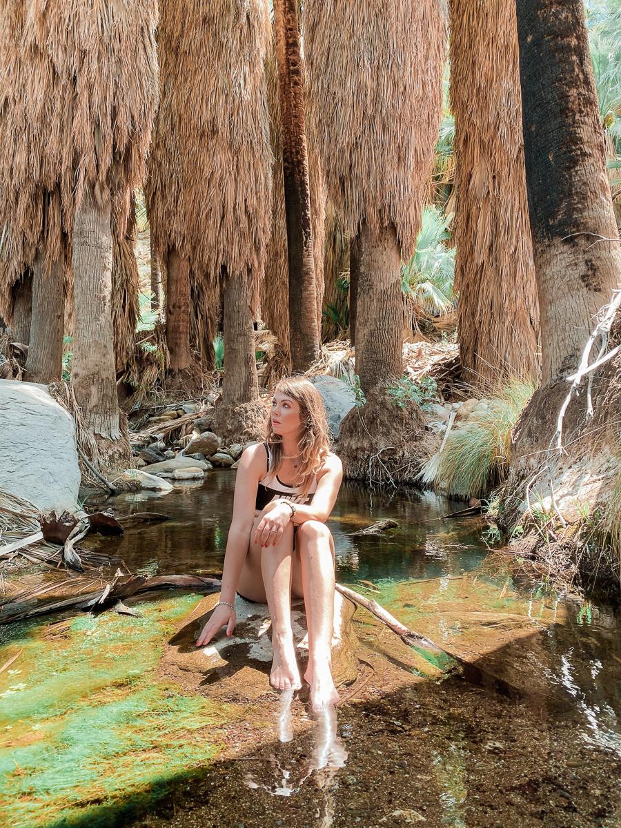 oasis california