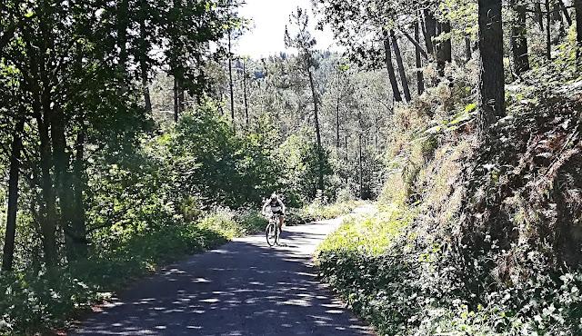 Ruta por el Bosque de Carballido