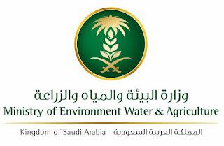 """وزارة البيئة والمياه والزراعة السعودية تحدد مواعيد صرف الدعم المادي لمستفيدي برنامج """"ريف"""""""