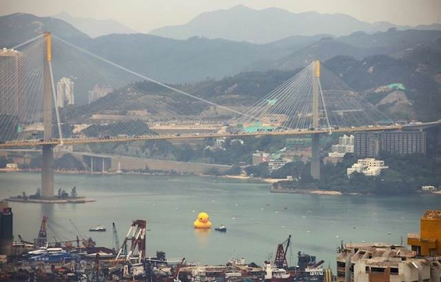 worlds largest rubber duck in hong kong