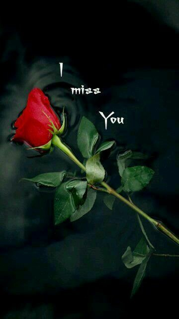 sad missing someone quotes,  thinking and missing you quotes  romantic miss u messages , desperately missing you quotes