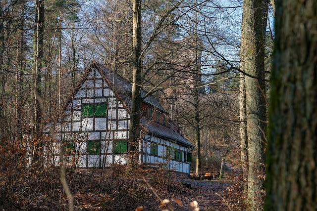 Richard-Löwenherz-Weg  Annweiler am Trifels  Wandern Südliche Weinstraße  Wanderung Pfälzerwald 15