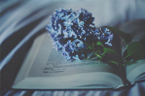 Photography+Books+Flowers_Pale Blue | Cool Chic Style Fashion