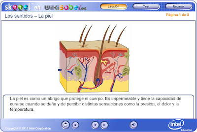 http://ww2.educarchile.cl/UserFiles/P0024/File/skoool/2010/Ciencia/skin/