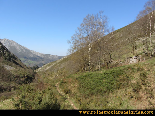 Ruta Ardisana, pico Hibeo: Collau Braniella