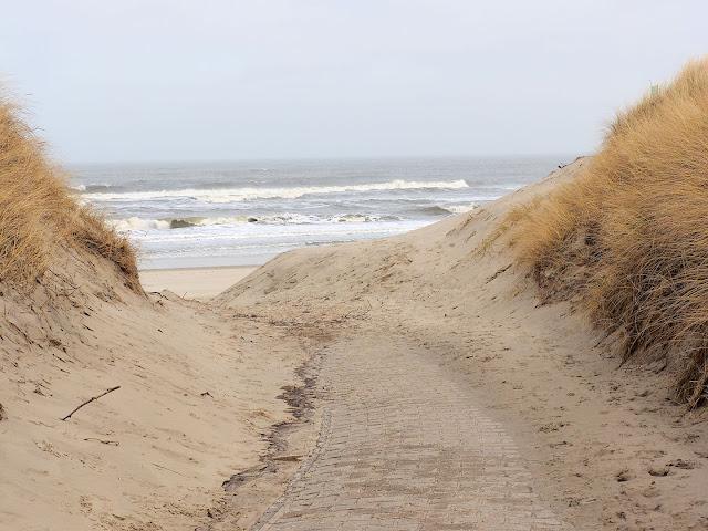 Langeoog, Strand, Strandübergang, Strandhafer, Nordsee