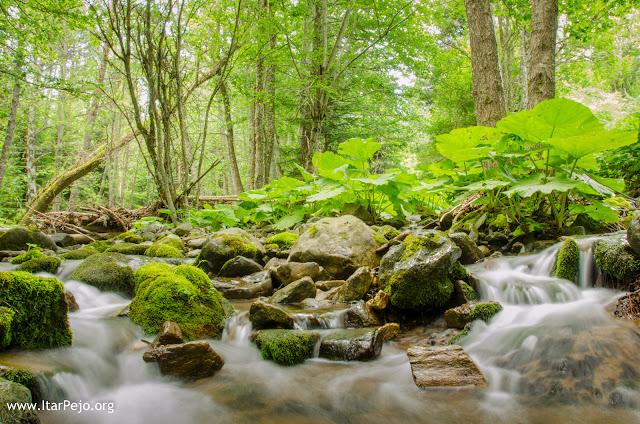 "Gradeshka River - Gradeshnica village, Mariovo, Macedonia - ""Urup"" locality"