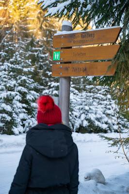 Rundweg Kreuzotter | Hochmoor Filzwald / Kloster Filz | Nationalpark Bayerischer Wald 05