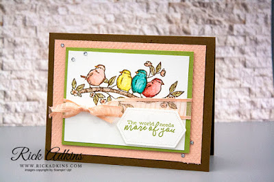 Free As A Bird Stamp Set, Watercolor Pencils, Tasteful Texture 3d embossing Folder, Rick Adkins, Stampin' Up!