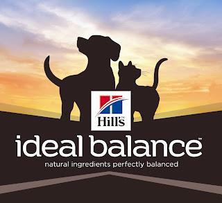 ideal balance hill's