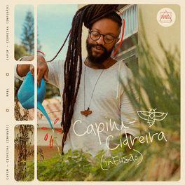 Download CD Capim-Cidreira (Infusão) - Rael 2020