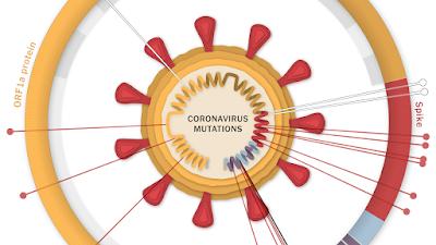 Russia has own strains of coronavirus
