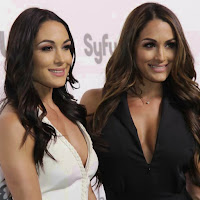 Rachael Evers Confirms Injury And Surgery, The Bellas Vs. MMA Stars On Family Feud, Ember Moon