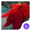 Maple leaf-APUS Launcher theme