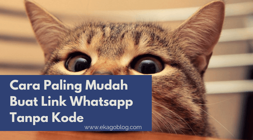 Cara Paling Mudah Buat Link Whatsapp Tanpa Kode