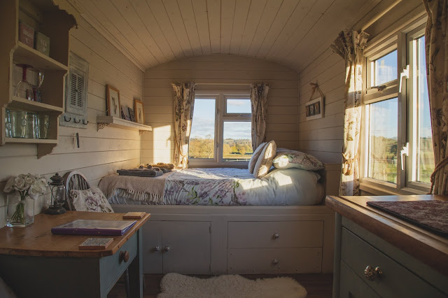 best dorm room ideas that will transform your room