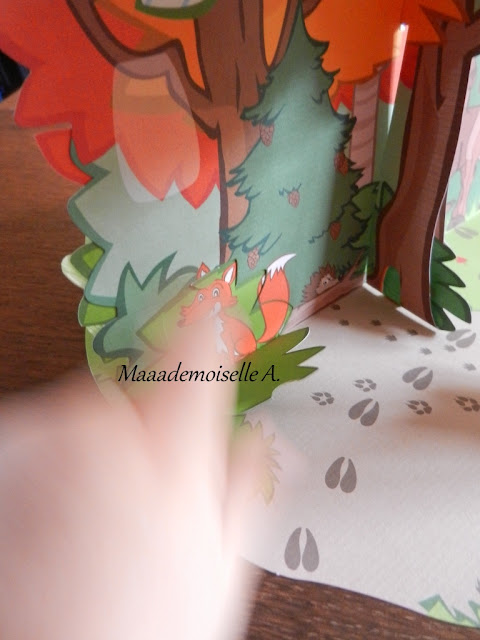 || Kit Créatif Pandacraft : Promenons-nous dans les bois (Présentation & Avis)