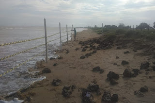 http://vnoticia.com.br/noticia/4172-prefeitura-isola-area-onde-foram-encontradas-ossadas-humanas-em-manguinhos