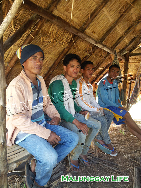 moringa-farm-workers