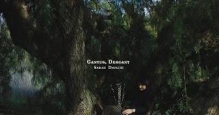 Sarah Davachi - Cantus, Descant Music Album Reviews