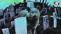 Cementerio de mascotas 1989
