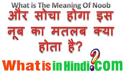 Noob का मतलब क्या होता है