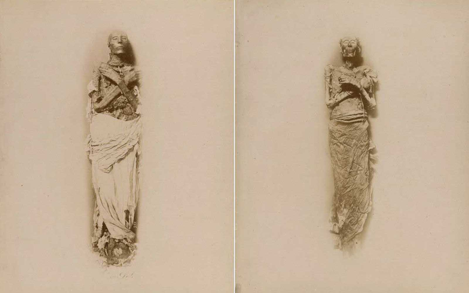 (Left) The mummy of Seti I, who reigned around 1290-1279 BCE. (Right) The mummy of Ramesses II, who reigned 1279-1213 BCE.