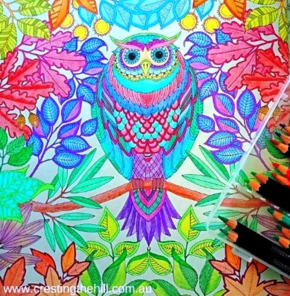 Adult colouring in - such a pleasant way to pass the time away