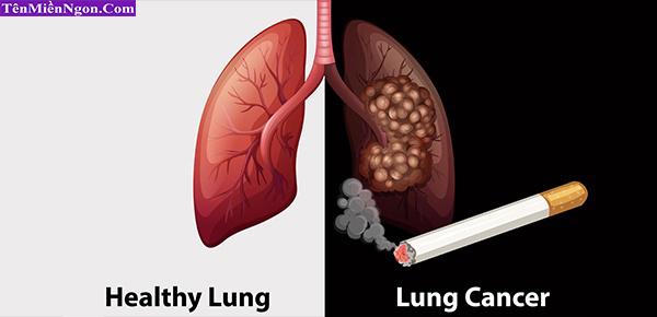 Thuốc lá - Nguyễn nhân hàng đầu gây ung thư Phổi