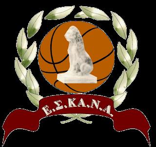 Διοργάνωση πρωταθλήματος νέων ανδρών