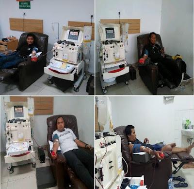 pendonor-darah-apheresis.