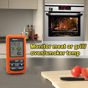 Thermopro Remote Food Thermometer