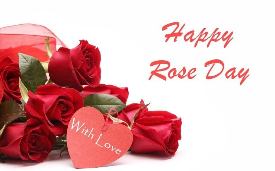 Best Happy Rose Day Quotes for Girlfriend & Wife