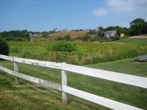Block Island Farms