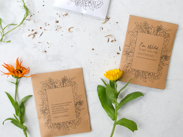 Wildflower Seed Packet Printable Gift Idea